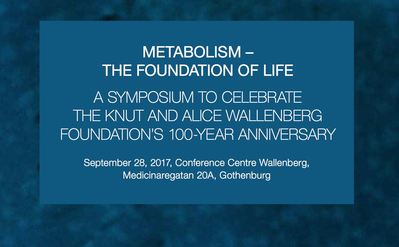 knut och alice wallenbergs stiftelse
