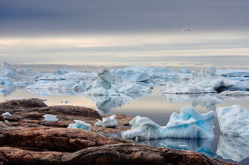 Klimatfrndringarna i Arktis sker nu 25 gnger snabbare n fr tio r sedan