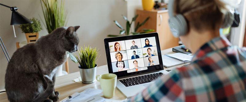 Prevas startar nytt bolag inom informationsvisualisering 2