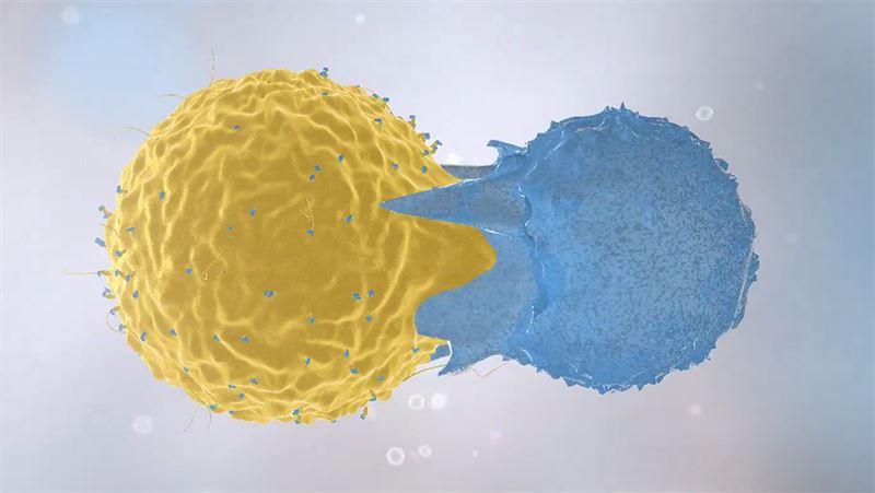 Immune cells in action. Illustration.