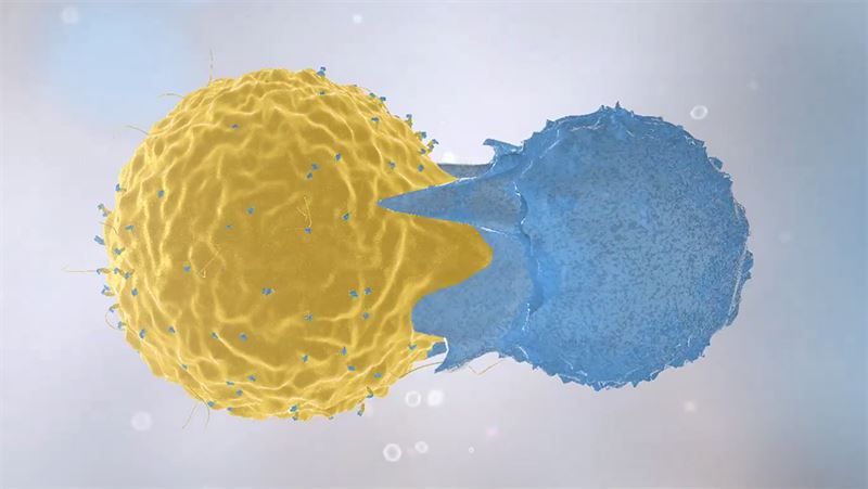 Immune cells in action. Illustration.