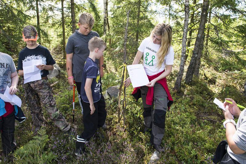 Förra året arrangerade Södra för första gången skogskollo för att inspirera och upplysa om skogsbruk.