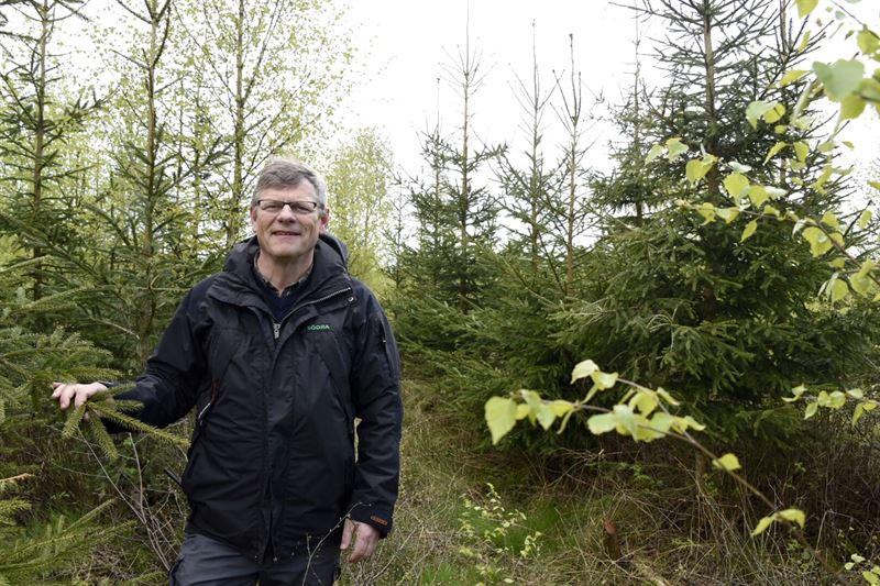 Göran Örlander, ordförande för Södras forskningsstiftelse och skogsstrateg i Södra / Chairman of Södra Research Foundation and forestry strategist at Södra.