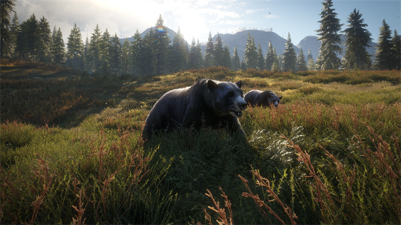 theHunter: Call of the Wild Announcing Pacific Northwest
