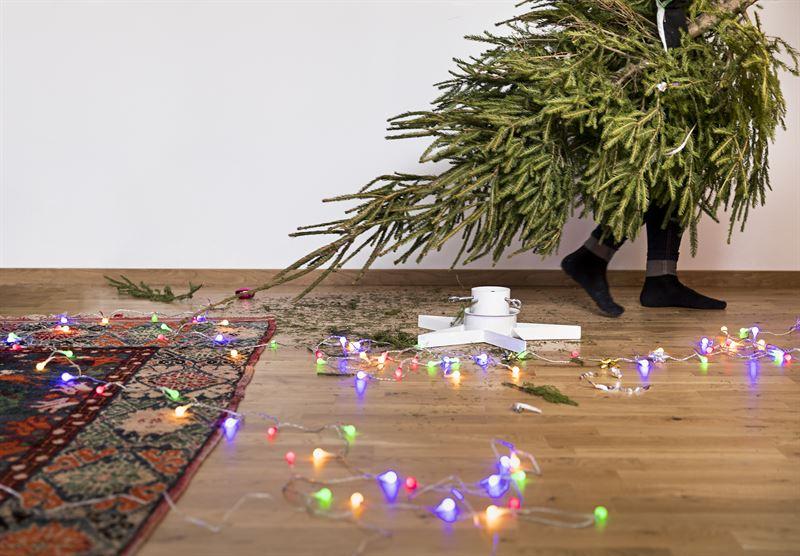 Skellefte Kraft samlar in julgranar och anvnder dem fr att producera vrme
