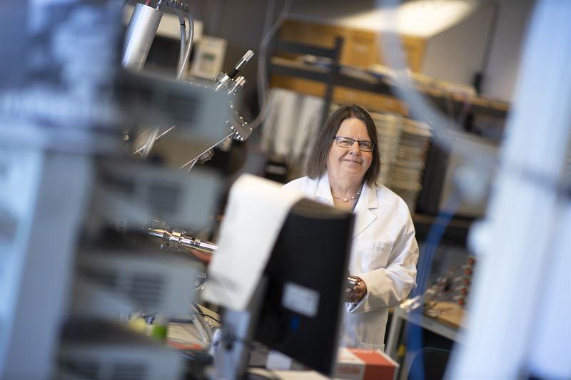 Kristina Edstrm batteriforskare vid Uppsala universitet