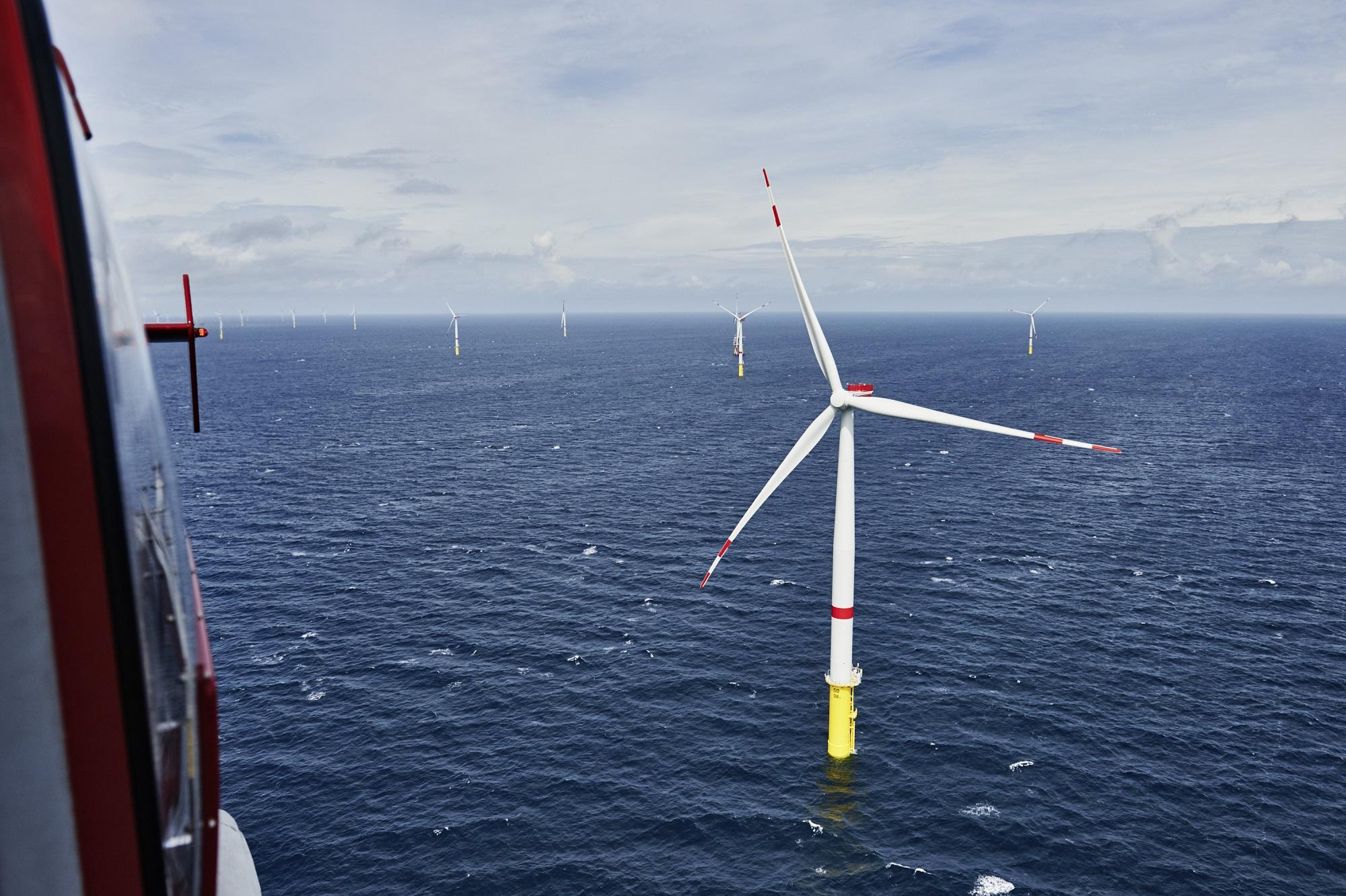Offshore Windfarm Sandbank