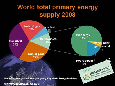 World total primary energy supply - World Bioenergy